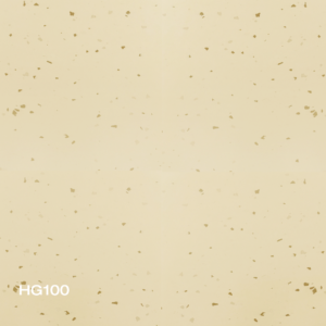 HG100