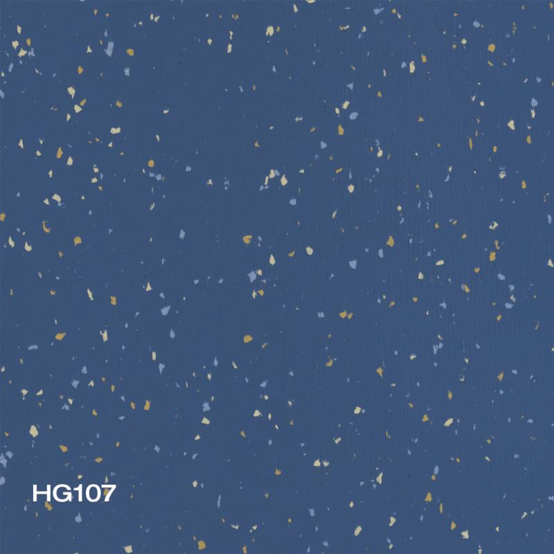 HG107
