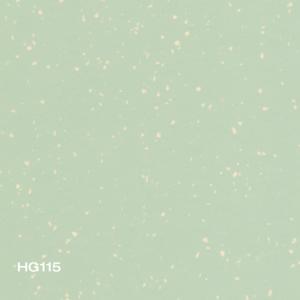 HG115