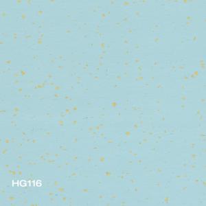 HG116
