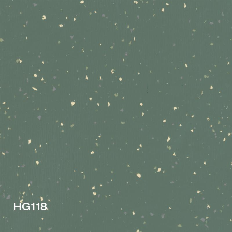 HG118
