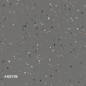 HG119