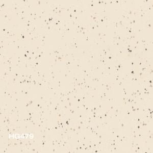 HG479