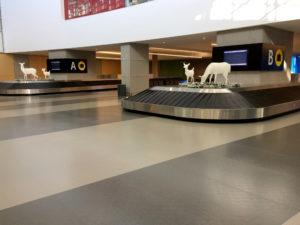 Rubber Flooring in Quebec City Airport Terminal